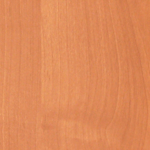 оранжевое дсп