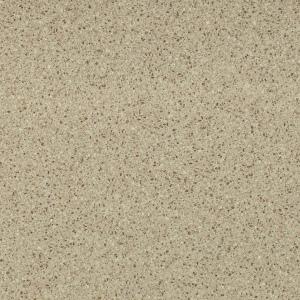 цвет покрытия песчаный в белую крапинку